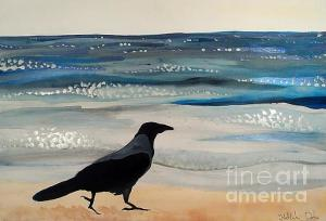 Featured 4times Hooded Crow at the Black Sea by Dora Hathazi Mendes