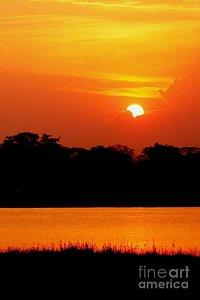 Featured African Sunset at Shire River in Malawi 02 photograph by Dora Hathazi Mendes