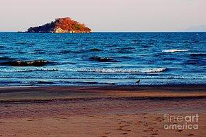 Featured Walk at Lake Malawi 01 photograph by Dora Hathazi Mendes